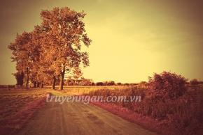 Những buổi chiều ngang qua làng tôi