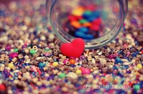 Muôn vị tình yêu