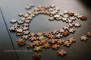 Những mảnh ghép cuộc đời