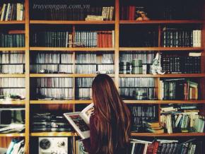 Điều gì tạo nên thành công cho những cuốn sách nước ngoài?