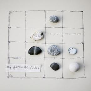 Bài học từ hòn đá