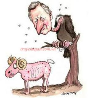 Người chăn cừu và quạ