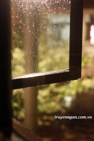 Chuồn chuồn ướt mưa