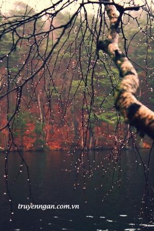 Nước mắt bên bến sông