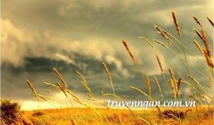 Ngày gió giao mùa