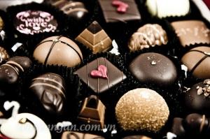 Viên chocolate cuối cùng