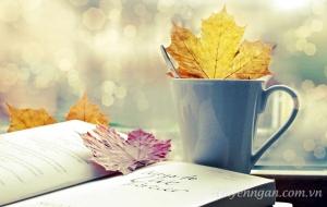 Tản mạn mùa thu