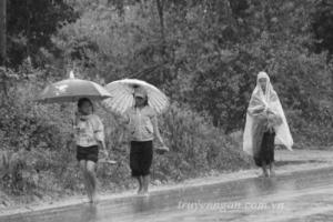Tấm áo mưa của mẹ