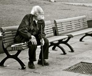 Yêu thương nơi băng ghế nhỏ