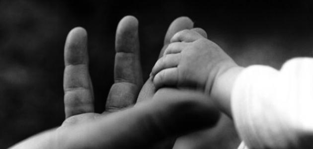 Bàn tay mẹ