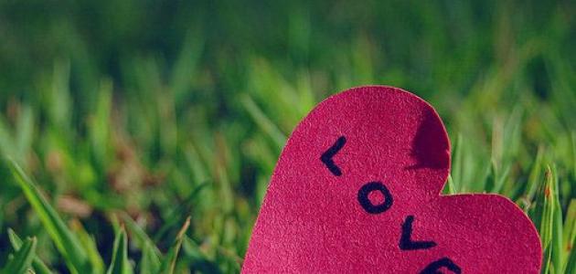 Ngược lại với yêu